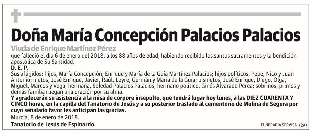 María Concepción Palacios Palacios