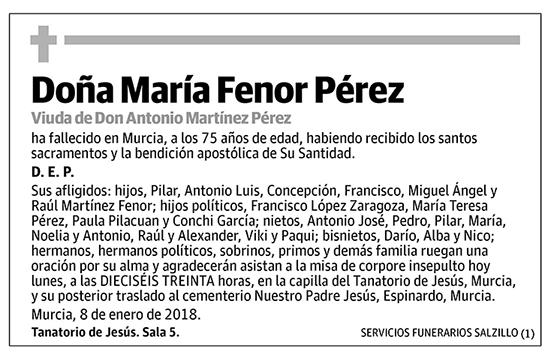María Fenor Pérez