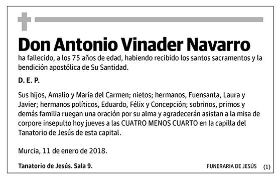 Antonio Vinader Navarro