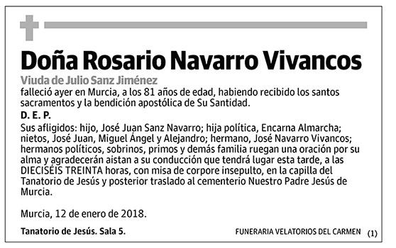 Rosario Navarro Vivancos