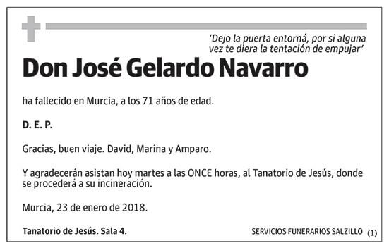 José Gelardo Navarro