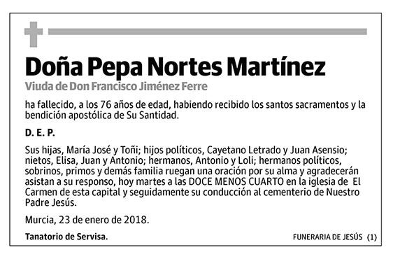 Pepa Nortes Martínez