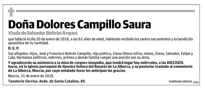 Dolores Campillo Saura