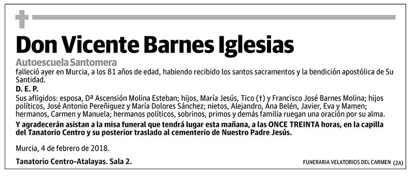 Vicente Barnes Iglesias