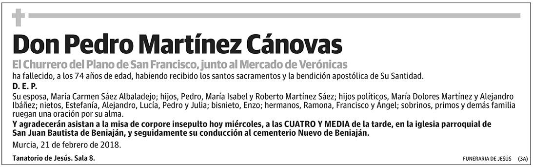 Pedro Martínez Cánovas