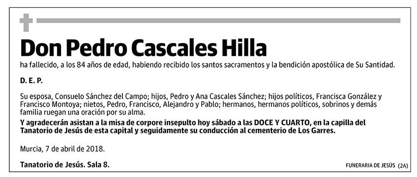Pedro Cascales Hilla