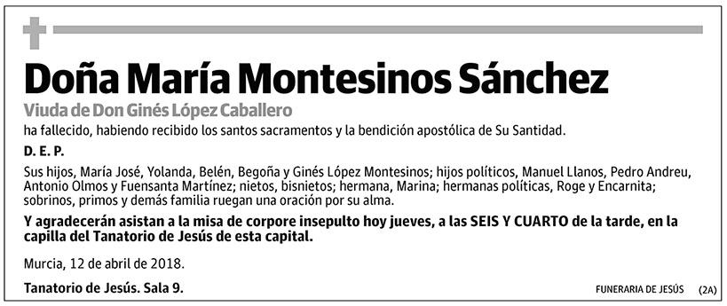 María Montesinos Sánchez