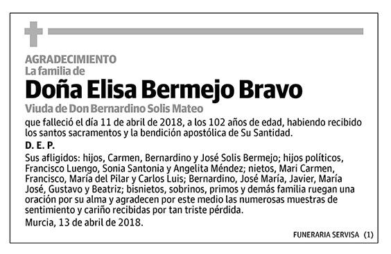 Elisa Bermejo Bravo