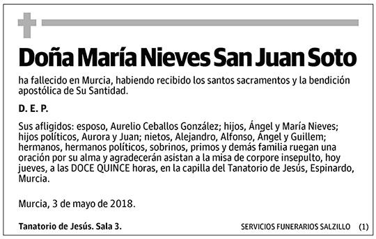 María Nieves San Juan Soto