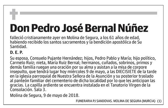 Pedro José Bernal Núñez