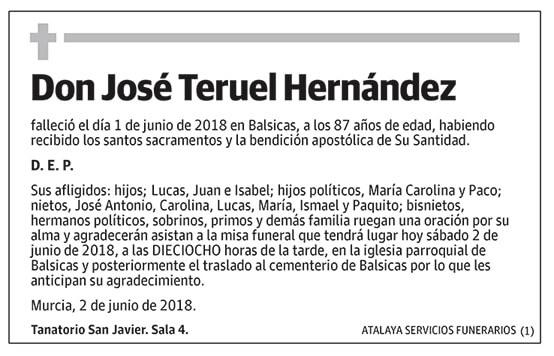 José Teruel Hernández