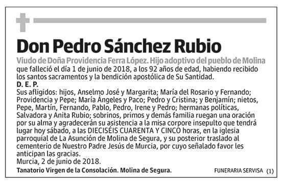 Pedro Sánchez Rubio