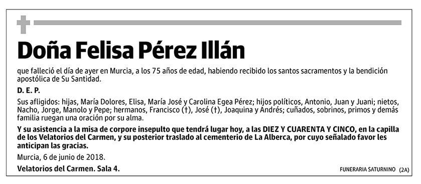 Felisa Pérez Illán