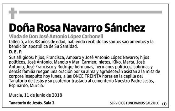 Rosa Navarro Sánchez
