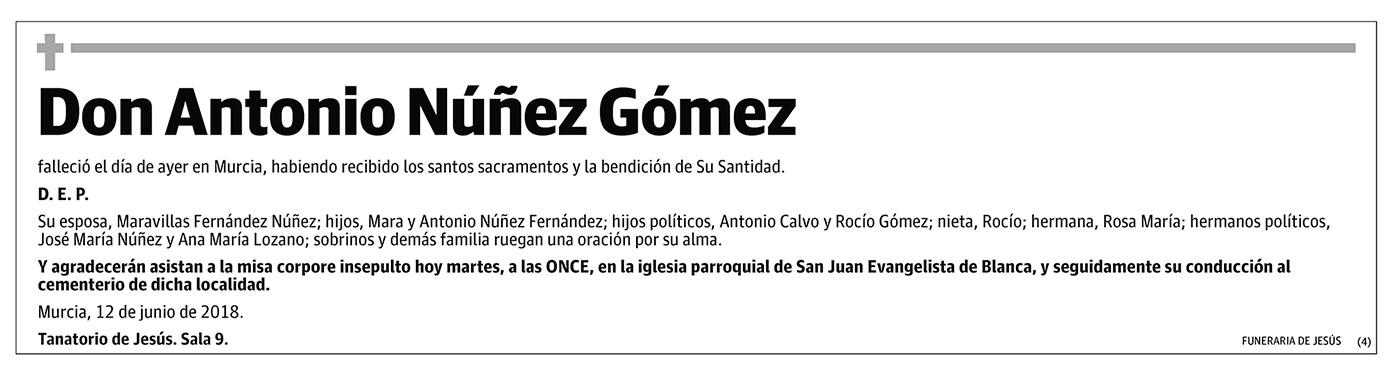 Antonio Núñez Gómez