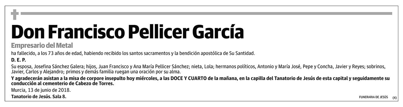 Francisco Pellicer García