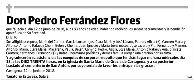 Pedro Ferrández Flores