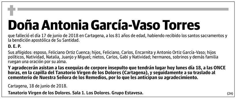 Antonia García-Vaso Torres
