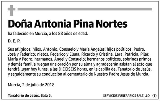 Antonia Pina Nortes
