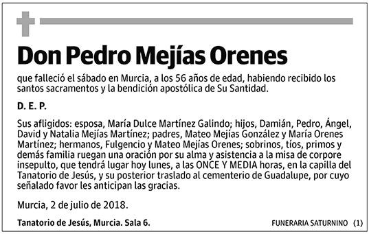 Pedro Mejías Orenes