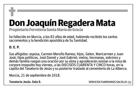 Joaquín Regadera Mata