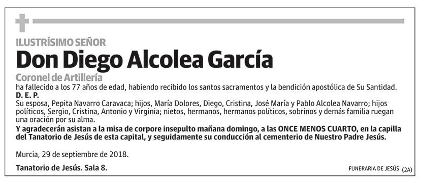 Diego Alcolea García