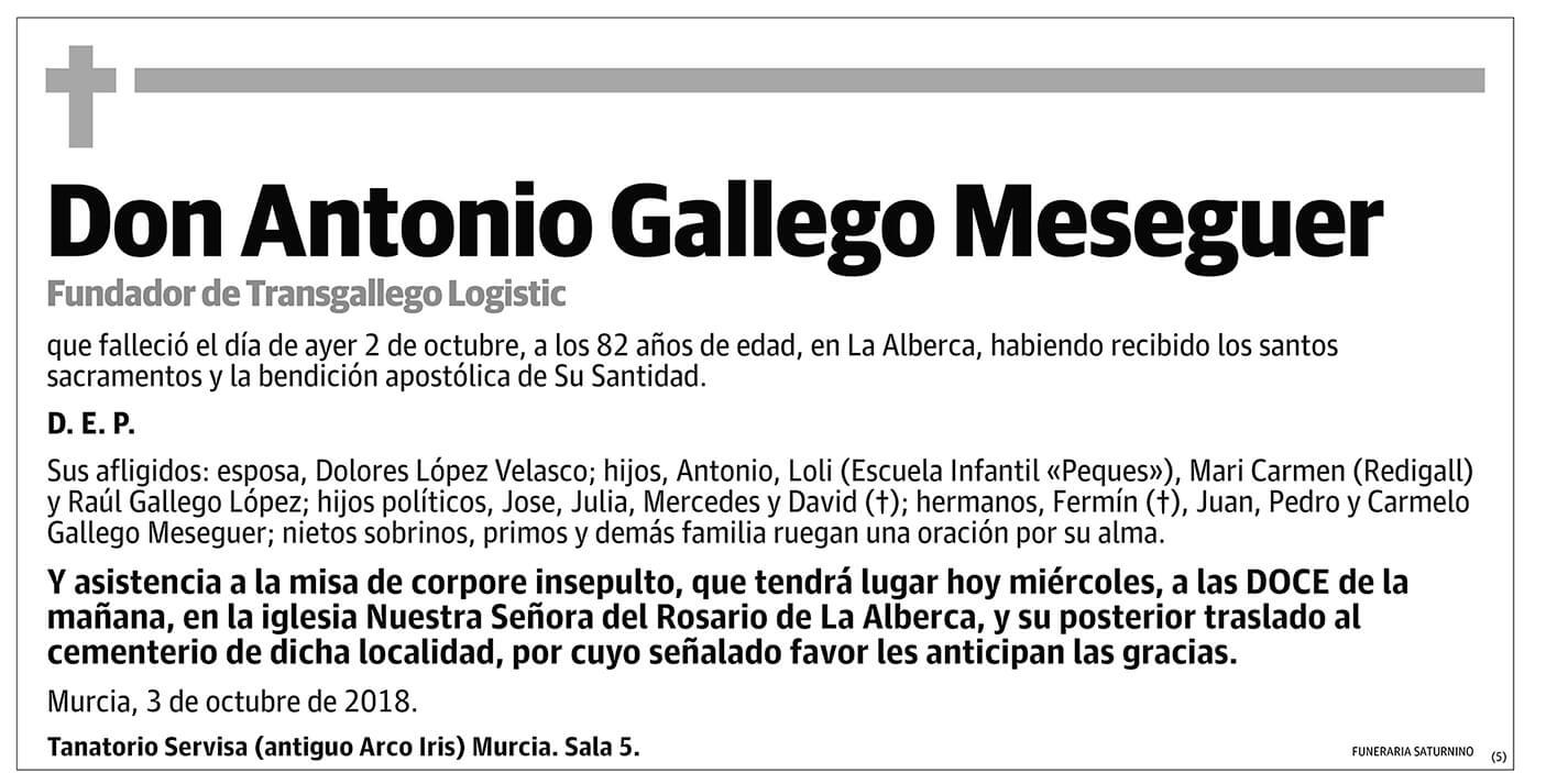 Antonio Gallego Meseguer