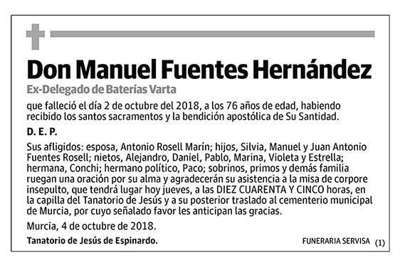 Manuel Fuentes Hernández