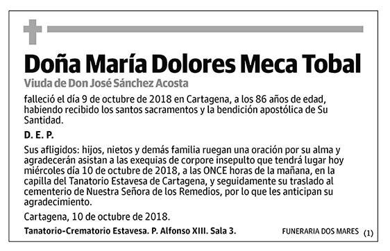 María Dolores Meca Tobal