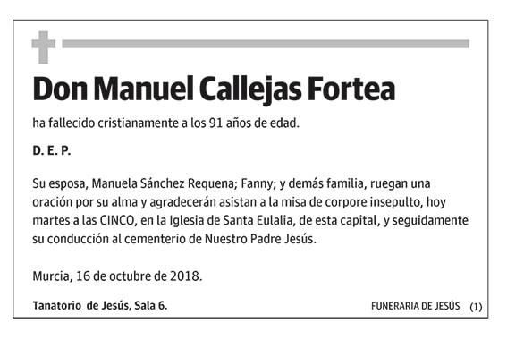 Manuel Callejas Fortea