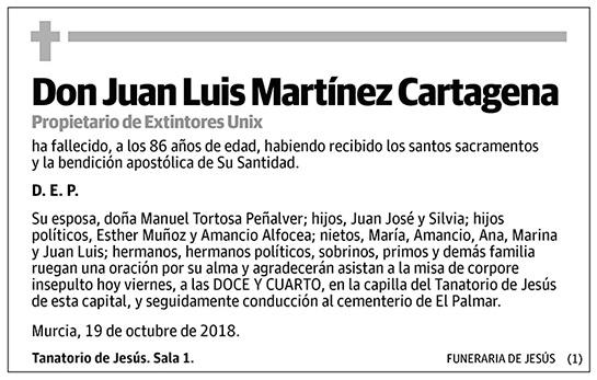 Juan Luis Martínez Cartagena
