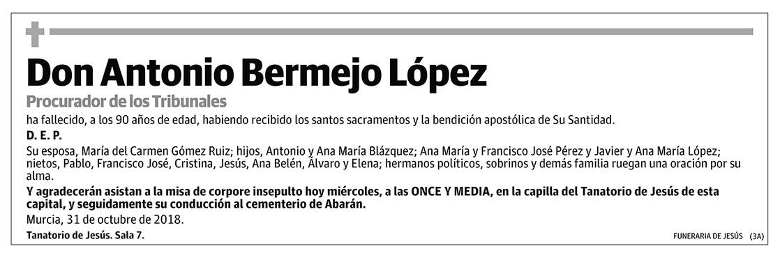 Antonio Bermejo López