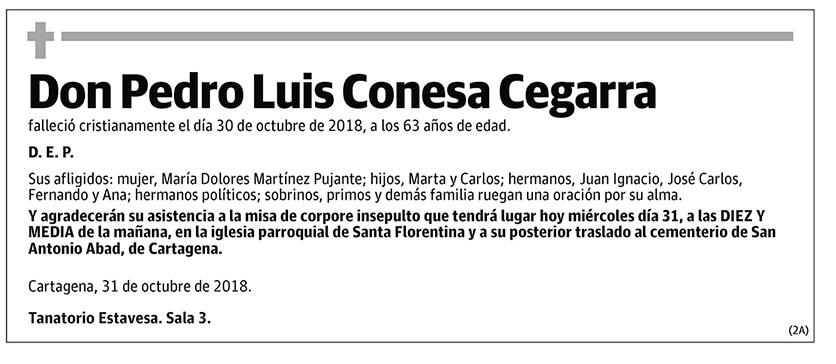 Pedro Luis Conesa Cegarra