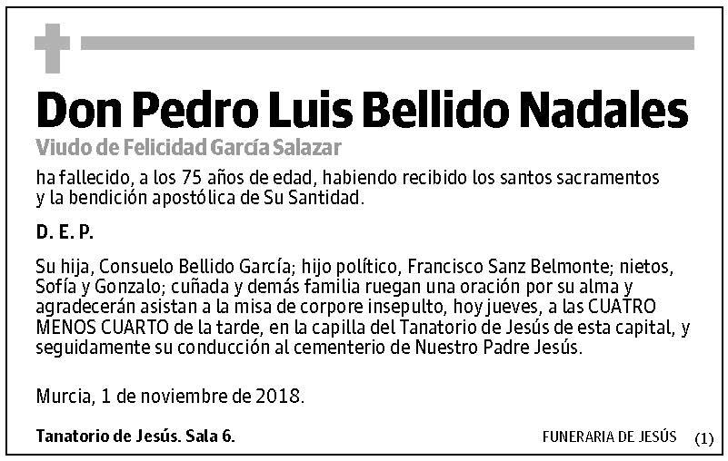 Pedro Luis Bellido Nadales