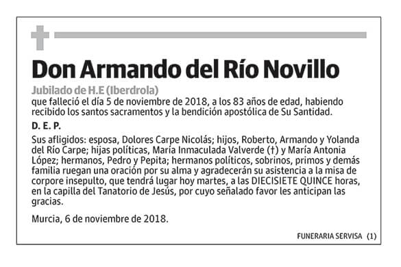 Armando del Río Novillo