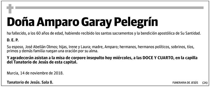 Amparo Garay Pelegrín