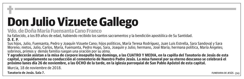 Julio Vizuete Gallego