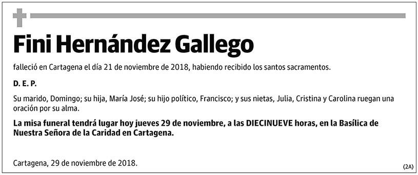 Fini Hernández Gallego