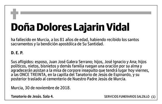 Dolores Lajarin Vidal
