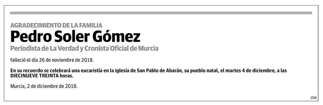 Pedro Soler Gómez