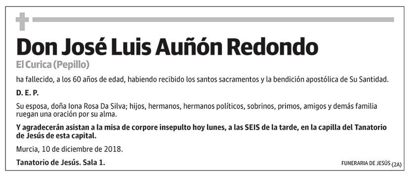 José Luis Auñón Redondo