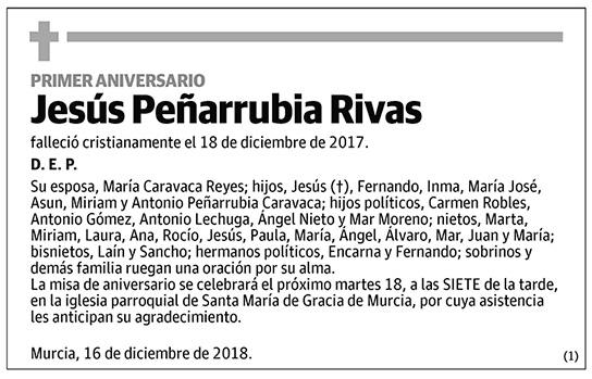 Jesús Peñarrubia Rivas