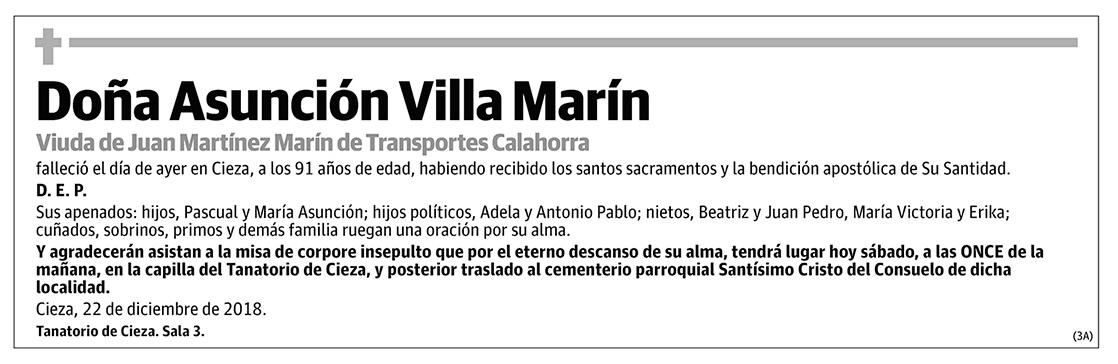 Asunción Villa Marín