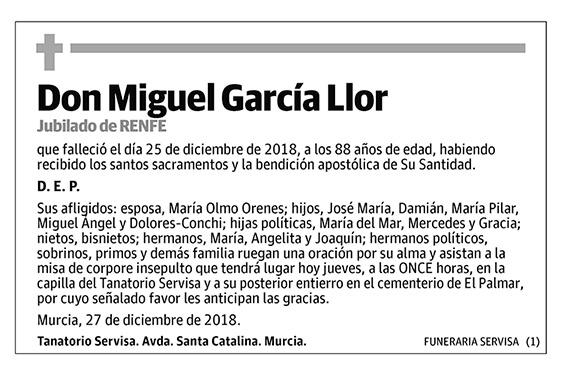Miguel García Llor