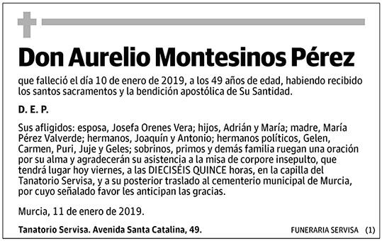Aurelio Montesinos Pérez