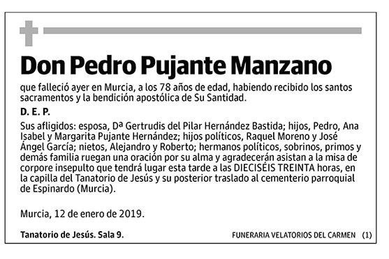 Pedro Pujante Manzano