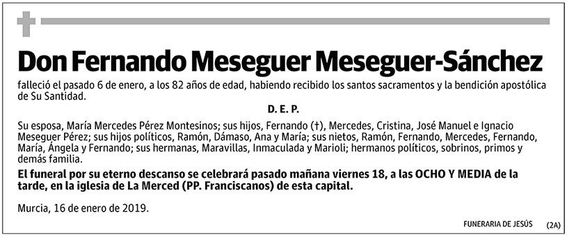 Fernando Meseguer Meseguer-Sánchez