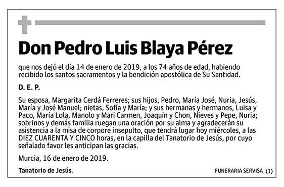 Pedro Luis Blaya Pérez