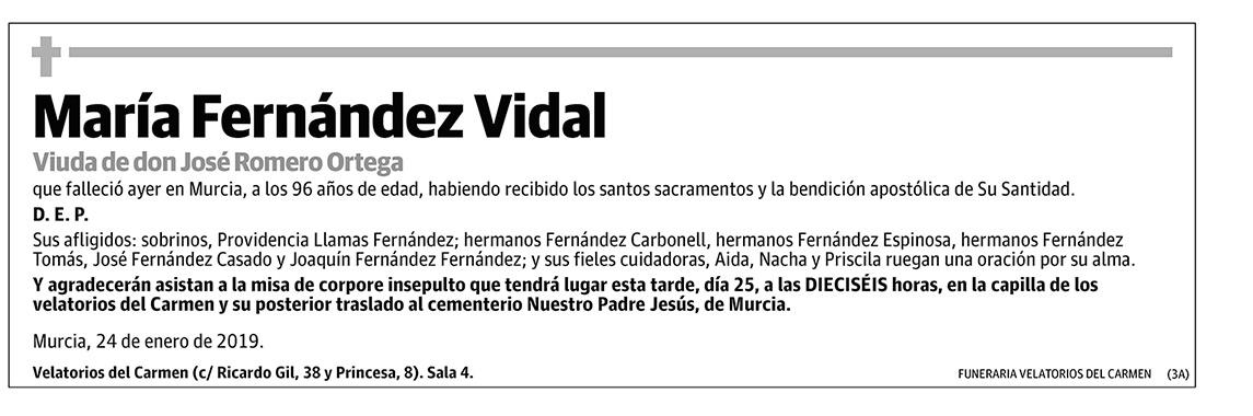 María Fernández Vidal