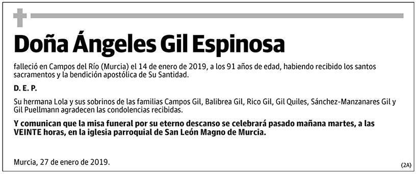 Ángeles Gil Espinosa